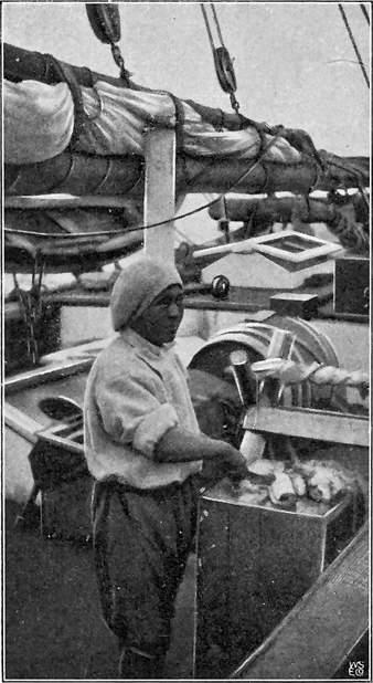 MANNI (SOMMEREN 1906).