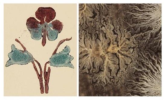 Eksempel på stempeltrykk i vått klister og «sol og stjerne marmor»